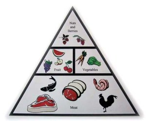 zone-paleo-food-pyramid1